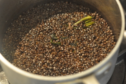 Deborah Madison's recipe for stewed lentils